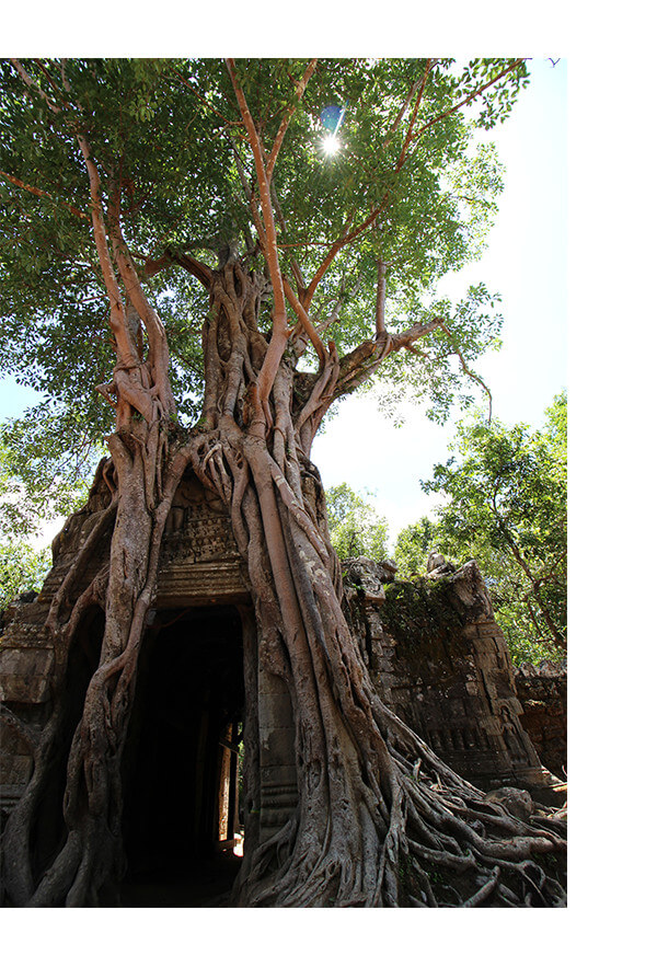 cambodia_02